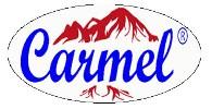 logo_cv.carmel